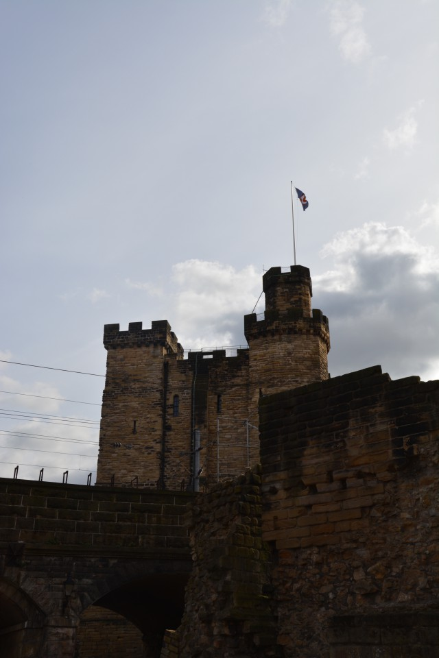 Newcastle - 23