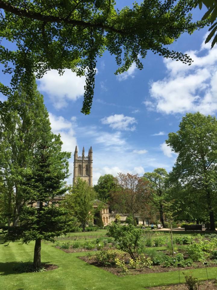 Oxford - 21