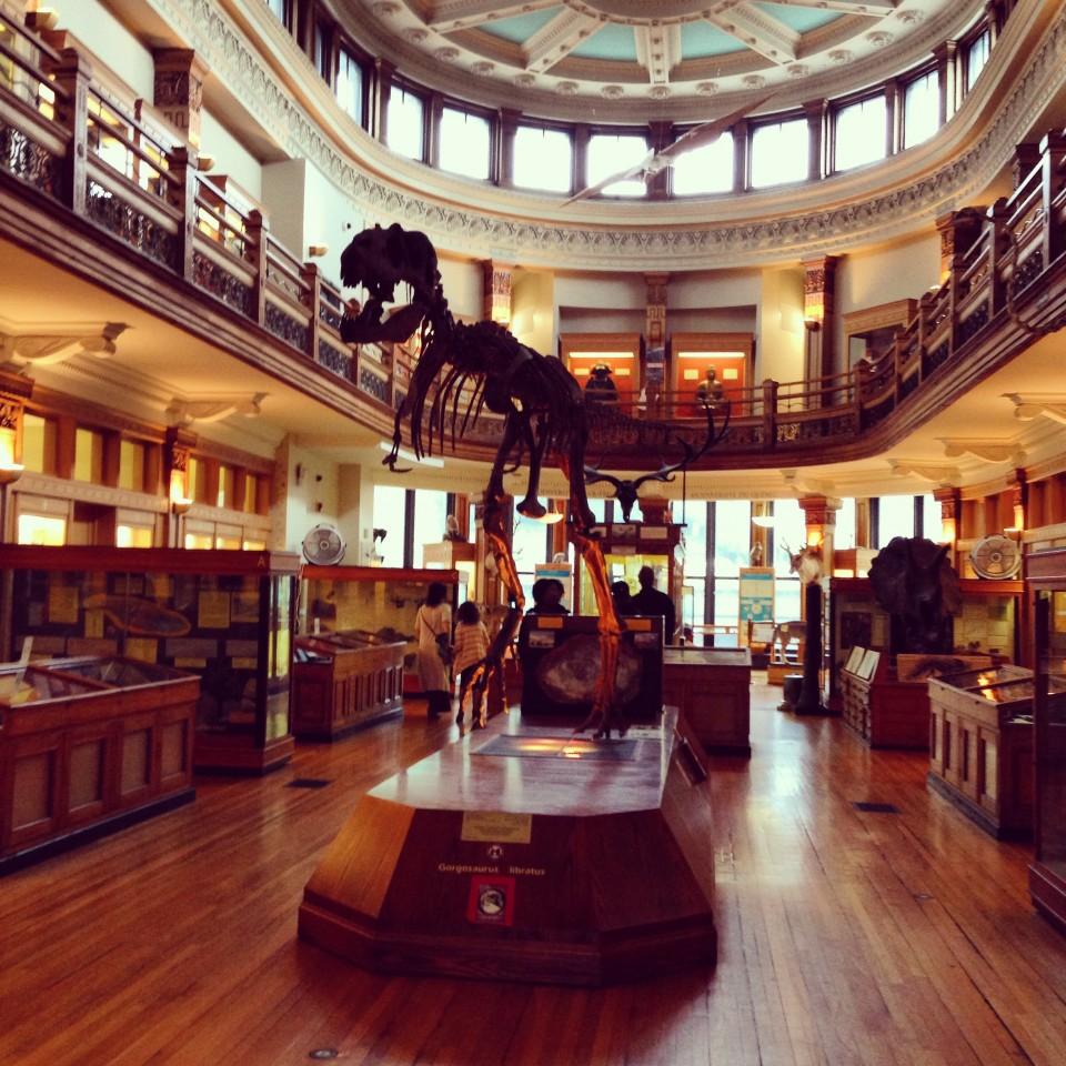 Musée Redpath 2